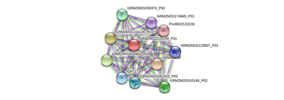 GRMZM2G125149_P01 protein (Zea mays) - STRING interaction network