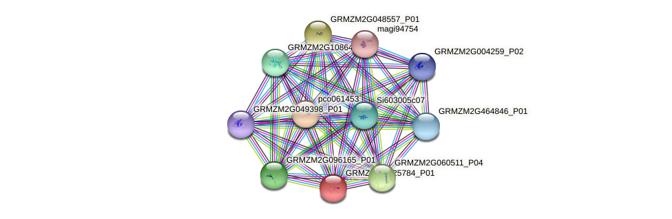 GRMZM2G125784_P01 protein (Zea mays) - STRING interaction network