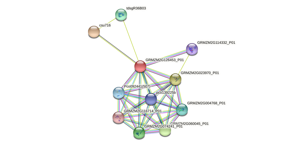 Zm.108722 protein (Zea mays) - STRING interaction network