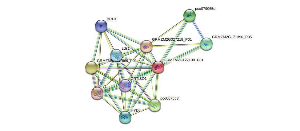 Zm.67287 protein (Zea mays) - STRING interaction network