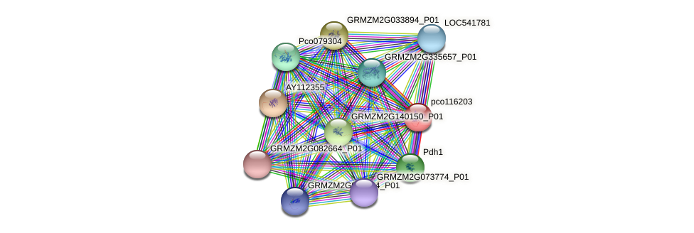 pco116203 protein (Zea mays) - STRING interaction network