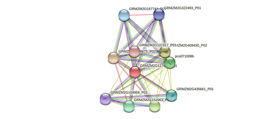 GRMZM2G127850_P01 protein (Zea mays) - STRING interaction network