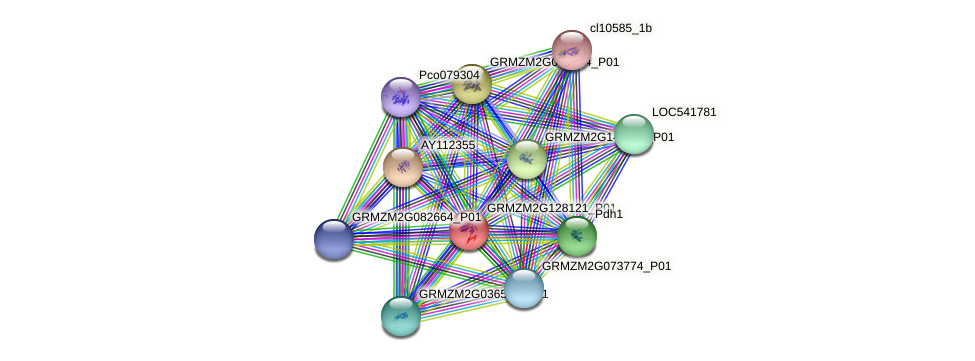 GRMZM2G128121_P01 protein (Zea mays) - STRING interaction network