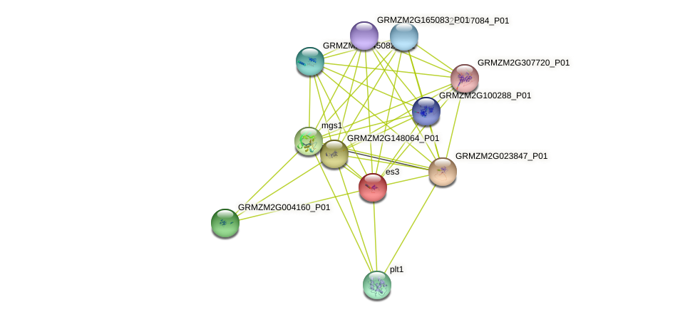 es3 protein (Zea mays) - STRING interaction network