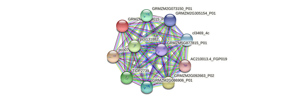 Zm.89212 protein (Zea mays) - STRING interaction network