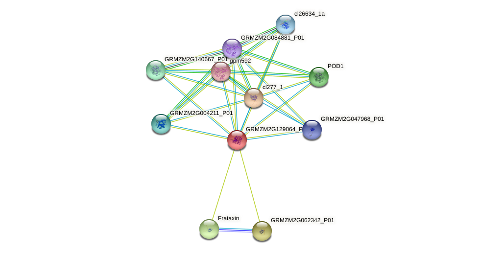 Zm.94158 protein (Zea mays) - STRING interaction network