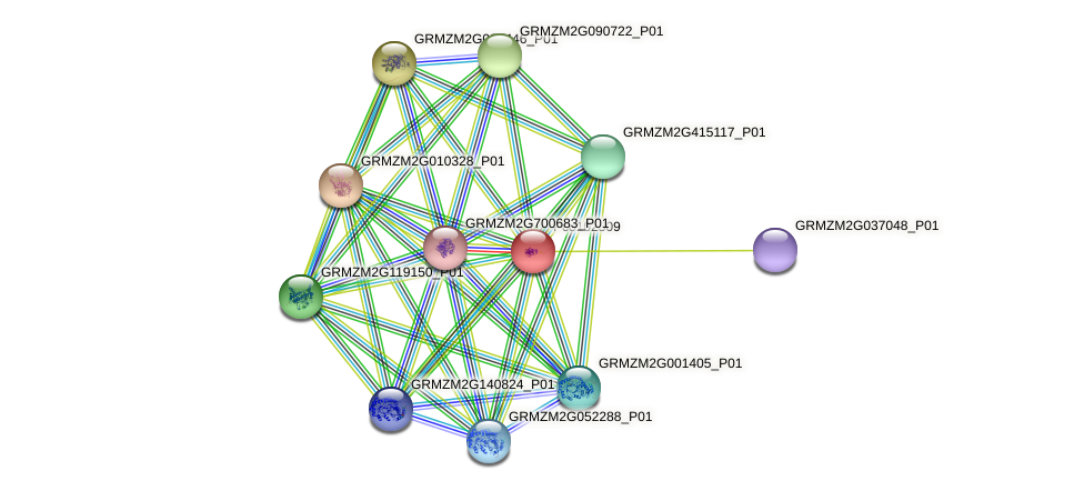 100191234 protein (Zea mays) - STRING interaction network