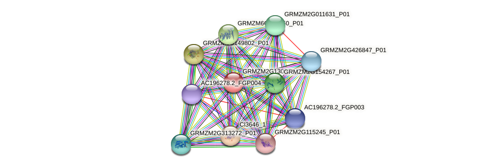 GRMZM2G130351_P01 protein (Zea mays) - STRING interaction network