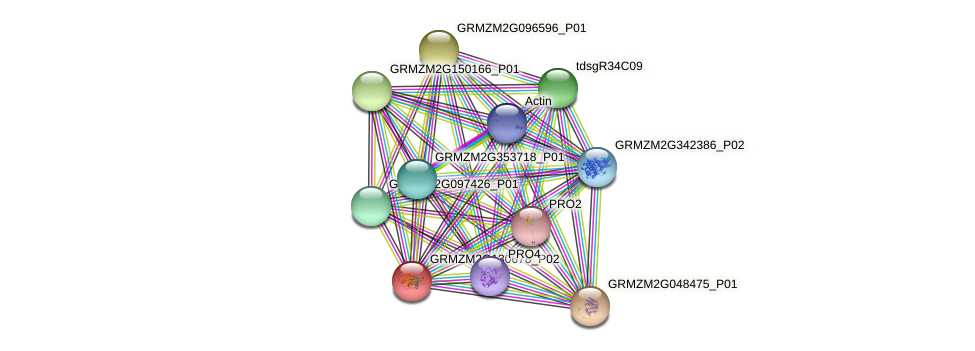 GRMZM2G130678_P02 protein (Zea mays) - STRING interaction network