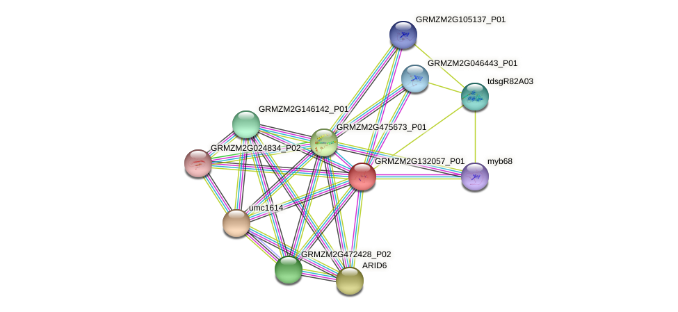 Zm.92965 protein (Zea mays) - STRING interaction network