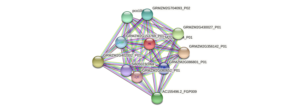GRMZM2G132644_P01 protein (Zea mays) - STRING interaction network
