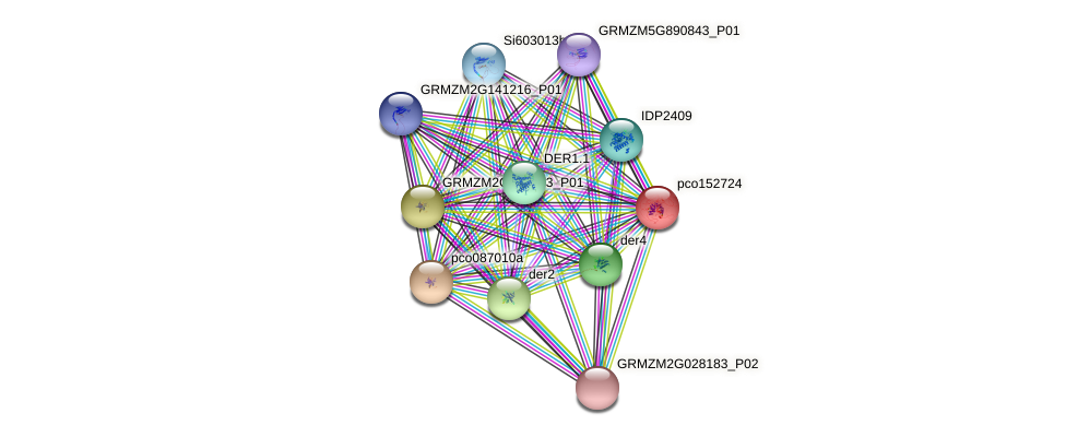 pco152724 protein (Zea mays) - STRING interaction network