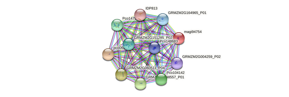 magi94754 protein (Zea mays) - STRING interaction network