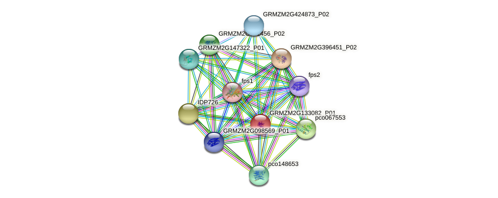ippi3 protein (Zea mays) - STRING interaction network