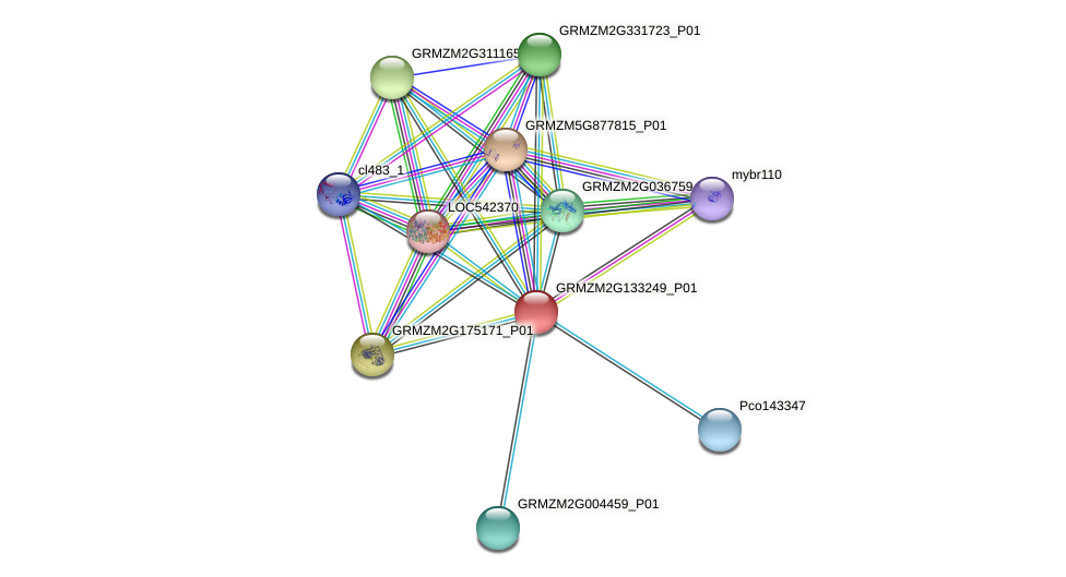 GRMZM2G133249_P01 protein (Zea mays) - STRING interaction network