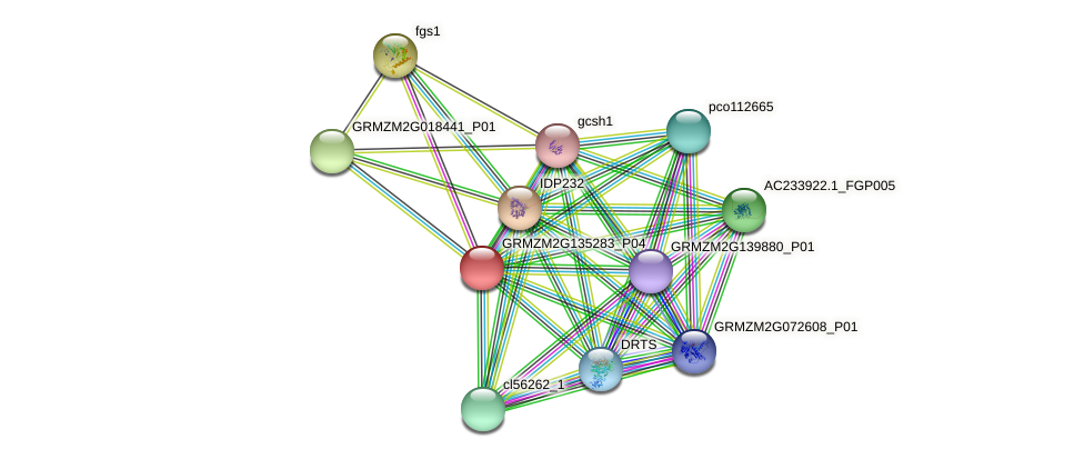 Zm.4908 protein (Zea mays) - STRING interaction network