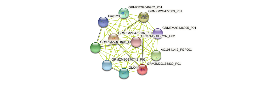 Zm.2669 protein (Zea mays) - STRING interaction network