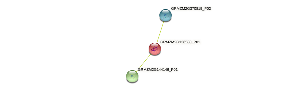 103633517 protein (Zea mays) - STRING interaction network