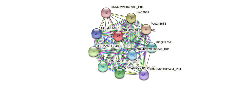GRMZM2G136854_P01 protein (Zea mays) - STRING interaction network