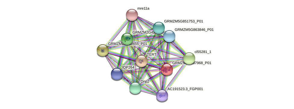 pco139890 protein (Zea mays) - STRING interaction network