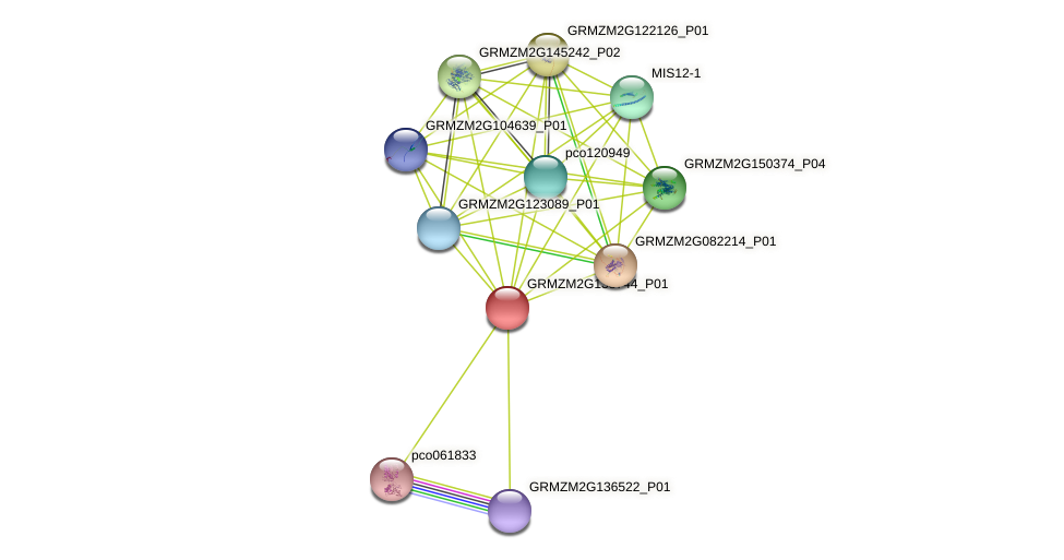GRMZM2G138744_P01 protein (Zea mays) - STRING interaction network