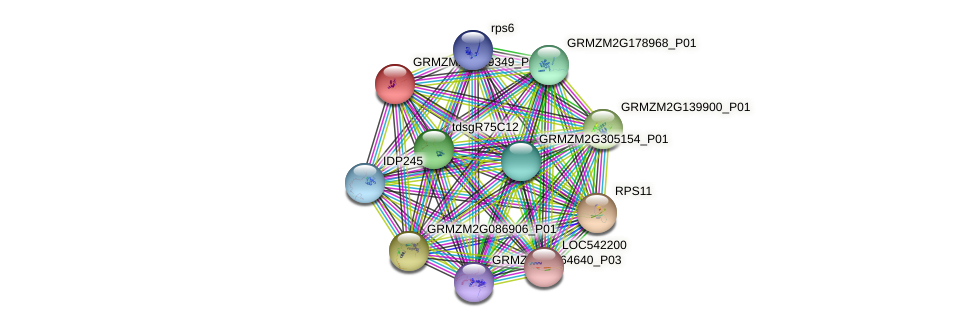GRMZM2G139349_P01 protein (Zea mays) - STRING interaction network