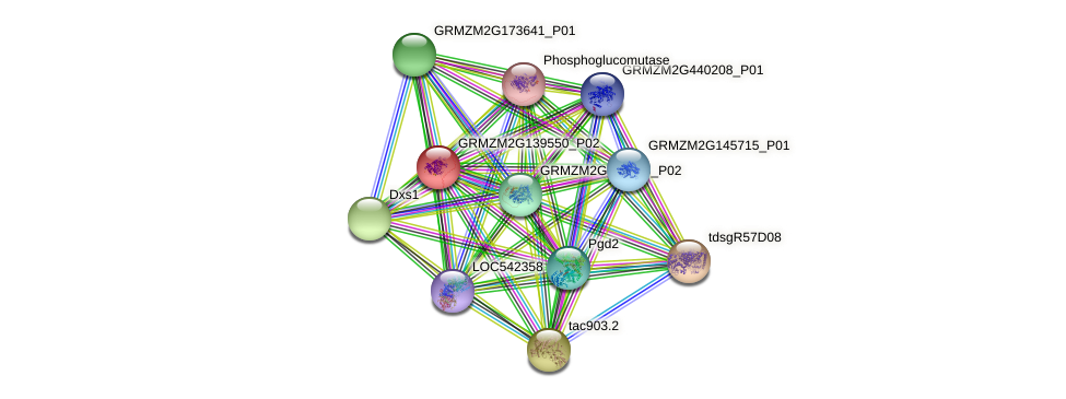 GRMZM2G139550_P02 protein (Zea mays) - STRING interaction network