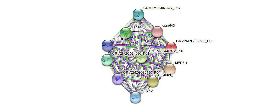 GRMZM2G139683_P03 protein (Zea mays) - STRING interaction network