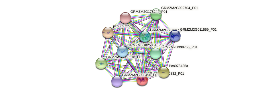 GRMZM2G140832_P01 protein (Zea mays) - STRING interaction network