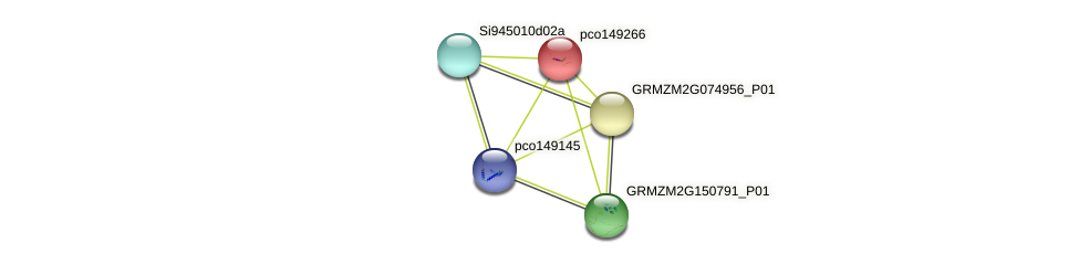 pco149266 protein (Zea mays) - STRING interaction network