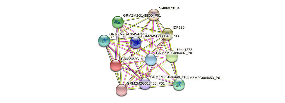 Zm.17879 protein (Zea mays) - STRING interaction network