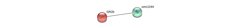 GR2b protein (Zea mays) - STRING interaction network