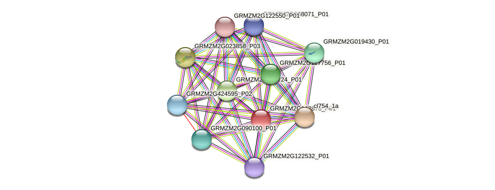 GRMZM2G143878_P01 protein (Zea mays) - STRING interaction network