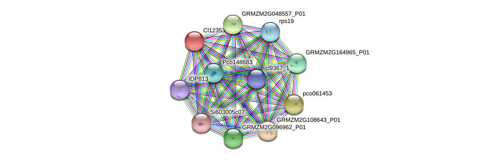 cl12353_1 protein (Zea mays) - STRING interaction network