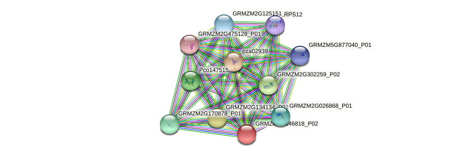 IDP1437 protein (Zea mays) - STRING interaction network