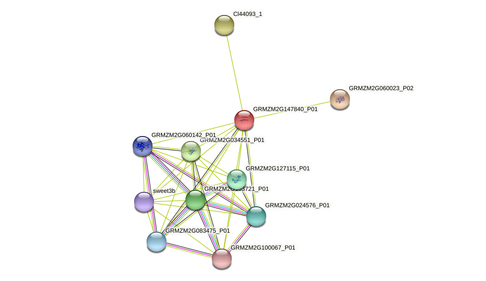 Zm.133957 protein (Zea mays) - STRING interaction network