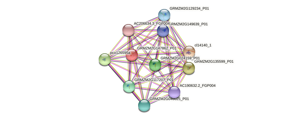 Zm.18209 protein (Zea mays) - STRING interaction network