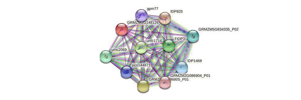 GRMZM2G148126_P01 protein (Zea mays) - STRING interaction network