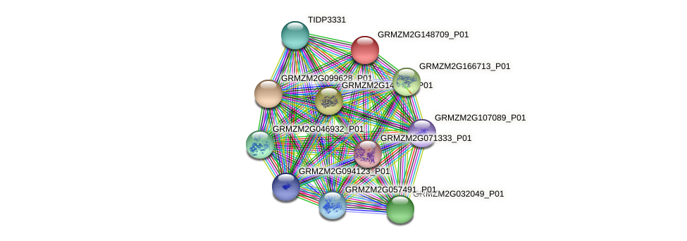 GRMZM2G148709_P01 protein (Zea mays) - STRING interaction network