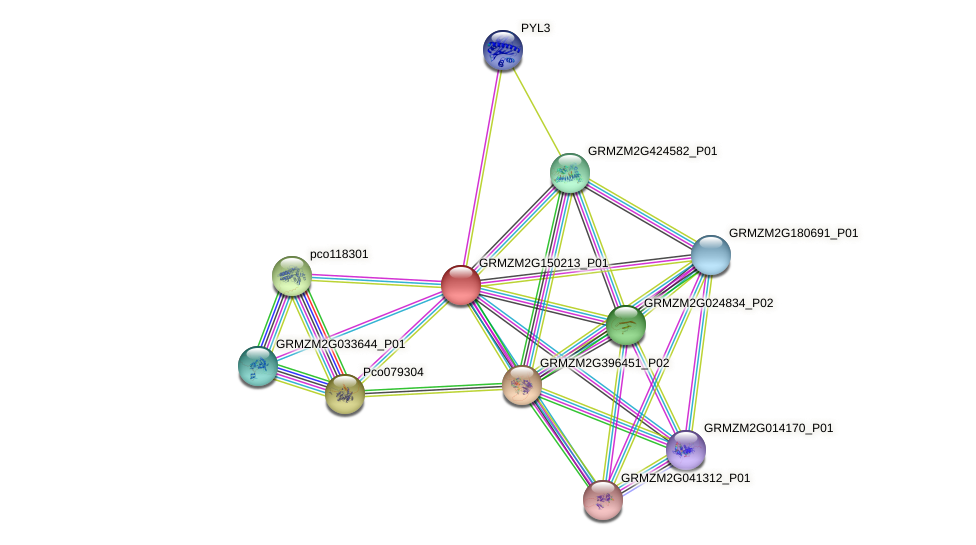 Zm.153039 protein (Zea mays) - STRING interaction network