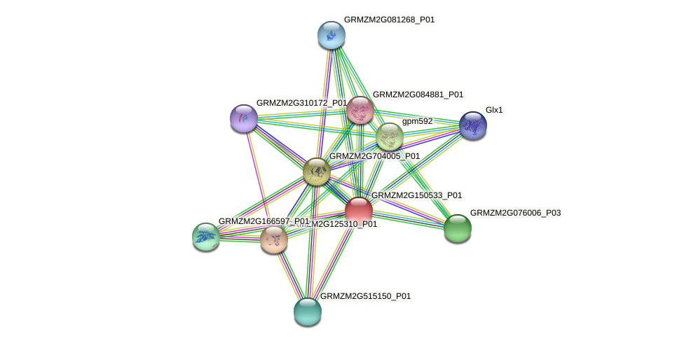 GRMZM2G150533_P01 protein (Zea mays) - STRING interaction network
