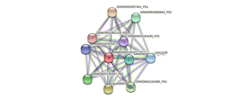GRMZM2G150867_P02 protein (Zea mays) - STRING interaction network