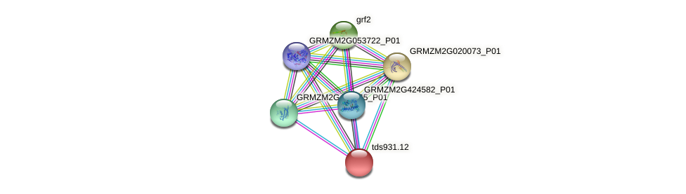 tds931.12 protein (Zea mays) - STRING interaction network