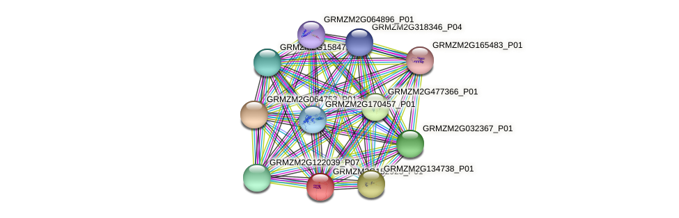 GRMZM2G152925_P01 protein (Zea mays) - STRING interaction network