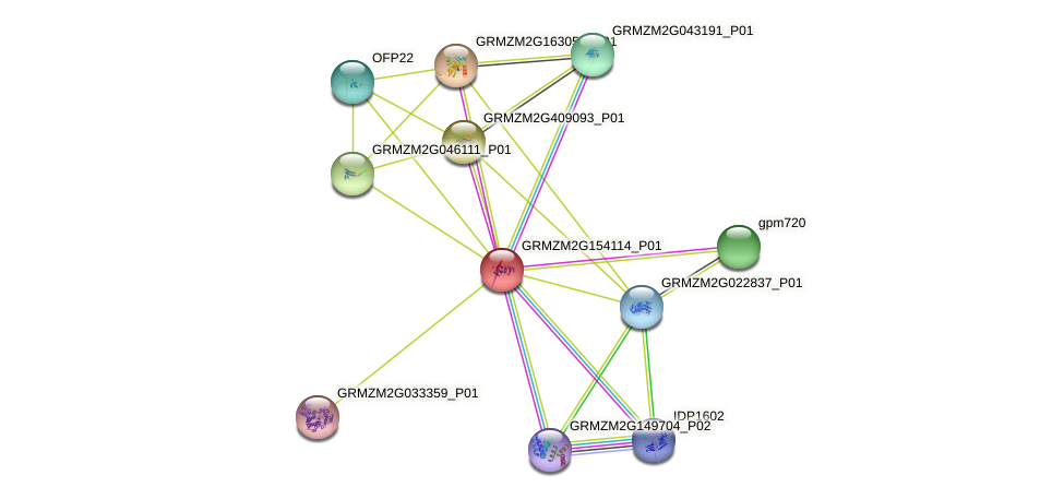 GRMZM2G154114_P01 protein (Zea mays) - STRING interaction network