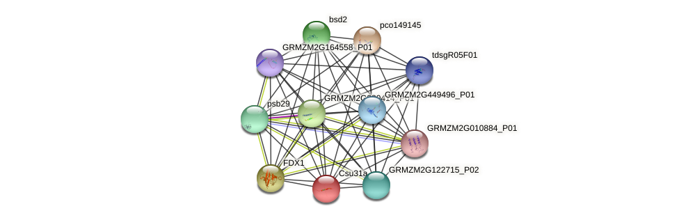 Zm.7022 protein (Zea mays) - STRING interaction network