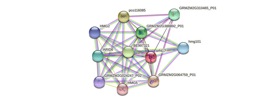 orf417 protein (Zea mays) - STRING interaction network