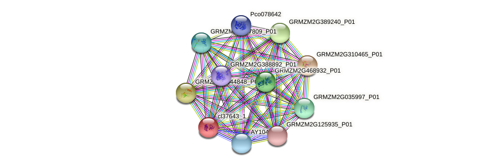 cl37643_1 protein (Zea mays) - STRING interaction network