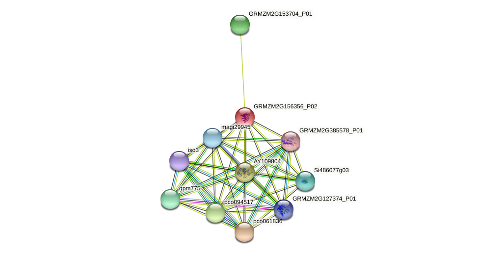 Zm.86259 protein (Zea mays) - STRING interaction network