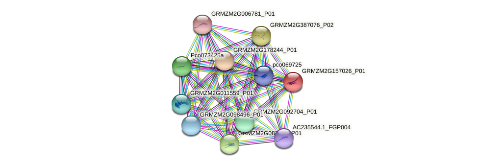 GRMZM2G157026_P01 protein (Zea mays) - STRING interaction network